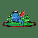 Frogs direct social media logo