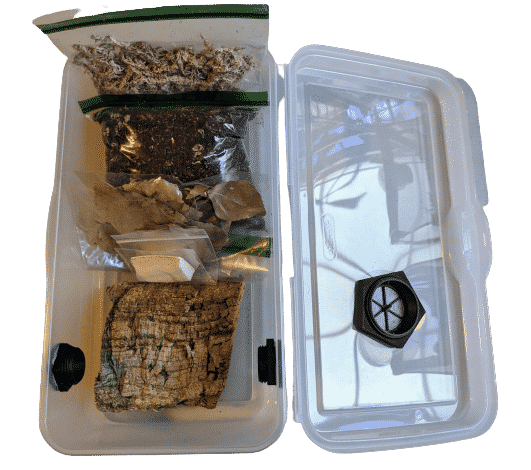 Isopods and other invertebrate container